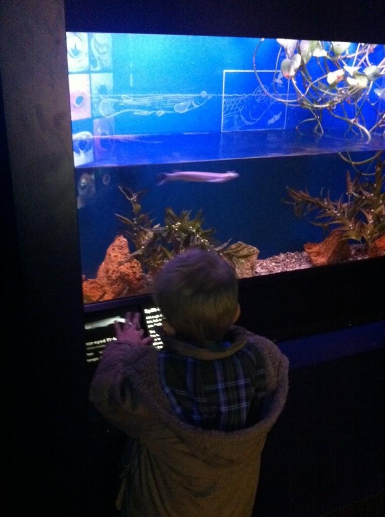 New York Aquarium Date
